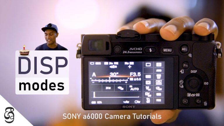 Sony a6000 Display Modes Selection