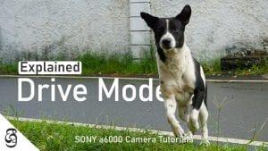 Sony a6000 camera drive modes සිංහළෙන් – PIXELvoiz Sri Lanka
