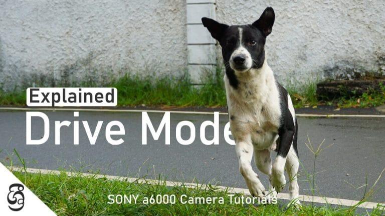 Sony a6000 camera drive modes
