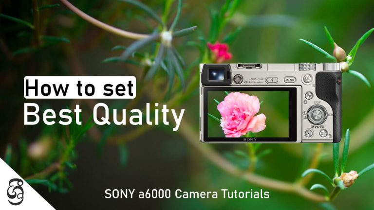 Sony a6000 camera Image Quality Settings
