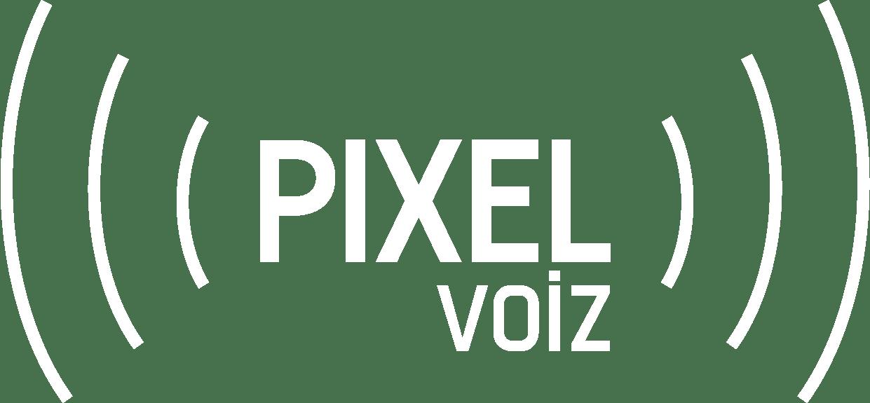 pixelvoiz-logo-white